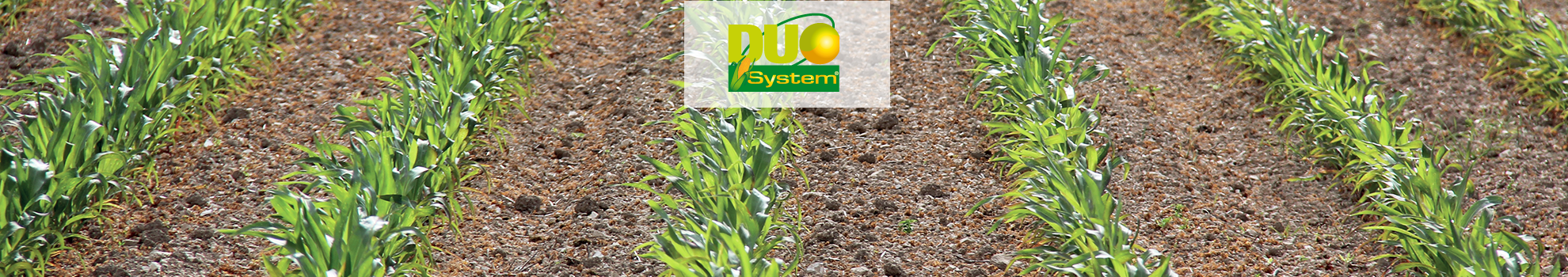 DUO SYSTEM®